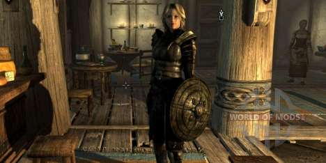TOP 5 mods for Skyrim