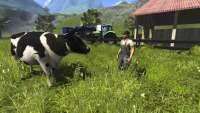 Cattle in Farming Simulator 2013