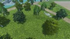 New textures of trees and grass