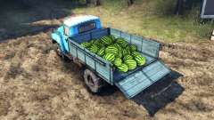 The load of watermelons and stones