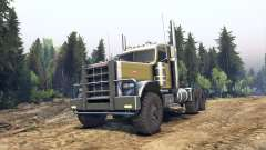 Peterbilt 379 green for Spin Tires