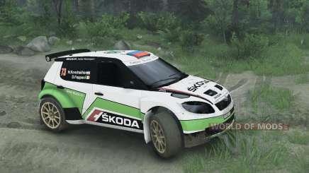Skoda Fabia S2000 for Spin Tires