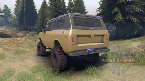 International Scout II 1977 buckskin for Spin Tires