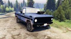 Ford F-100 custom PJ4