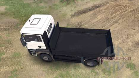 MAN TGS Little Flatbed for Spin Tires