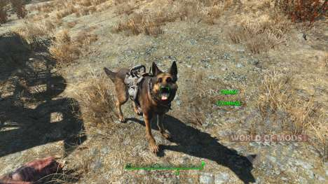 Armor for Dogmeat cheat for Fallout 4