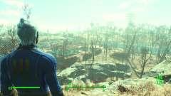 Fallout 3 Esque