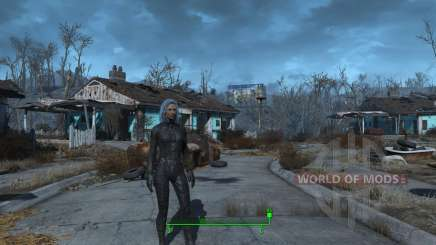 Sex change mod for Fallout 4