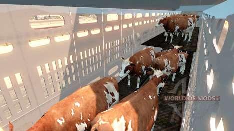 The animal transport semi-trailer for American Truck Simulator