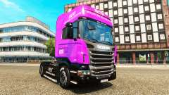 Muller skins for trucks MAN Scania and Volvo
