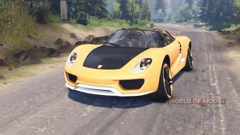 Porsche Carrera for Spin Tires