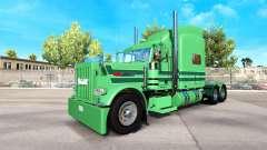 Skin A. J. Lopez for the truck Peterbilt 389