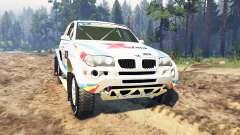BMW X3 Rally