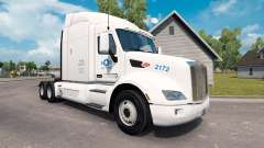 USA Truck skin for the truck Peterbilt