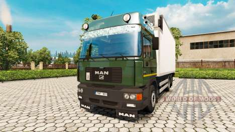 MAN F2000 19.414 BDF for Euro Truck Simulator 2