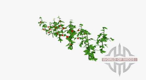 Tomato bushes for Farming Simulator 2017