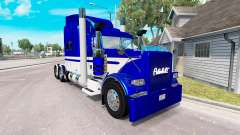 Skin Equipment Express truck Peterbilt 389
