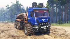 The Yamal-6