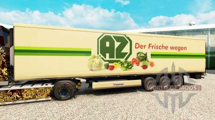 Skin AZ for semi-refrigerated for Euro Truck Simulator 2
