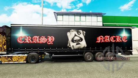 Skin Crasy Trans Logistic v2.0 for trailers for Euro Truck Simulator 2