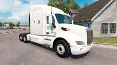 Epes Transport skin for the truck Peterbilt 579