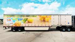 Skin Dole on a curtain semi-trailer