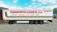 Skin Transportes Caudete S. A. curtain semi-trai