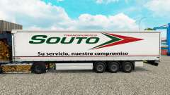 Skin Souto curtain semi-trailer