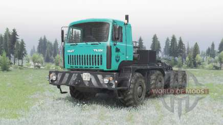 MZKT 7429-010 turquoise for Spin Tires