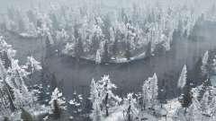 Winter Bog