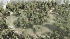 Swampy forest for MudRunner
