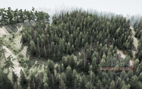 Forest story 2 for Spintires MudRunner