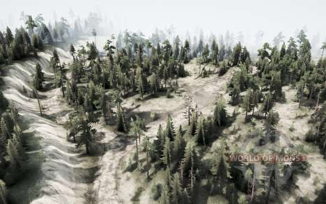Forest road for Spintires MudRunner