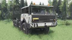 Tatra T813 TP 8x8 1967 Kings Off-Road 2 v1.1 for Spin Tires